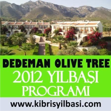 Dedeman Olive Tree 2012 Yılbaşı Programı